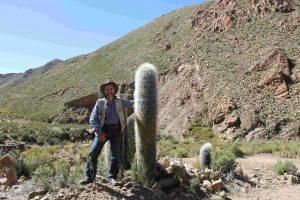GC & cactus Argentina